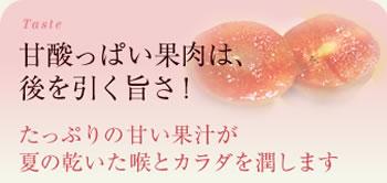 甘酸っぱい果肉は、後を引く旨さ!たっぷりの甘い果汁が夏の乾いた喉とカラダを潤します