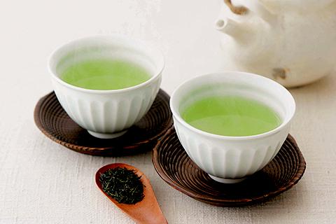 福岡の八女茶
